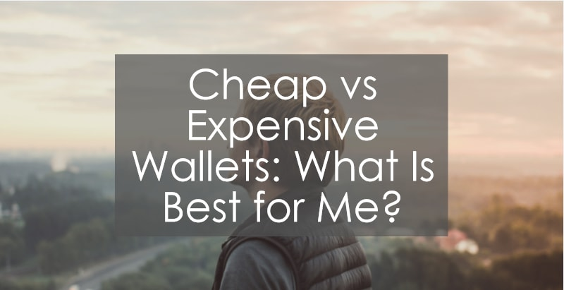 Cheap Vs Expensive Wallets  What Is Best For Me
